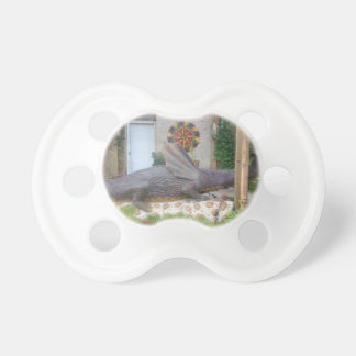 Photo of Samantha the Dragon Pacifier
