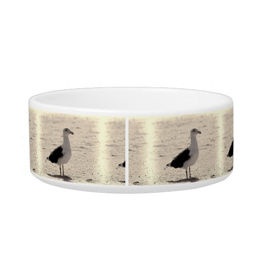 Photo of Seagull on Coney Island Beach Pet Water Bowl