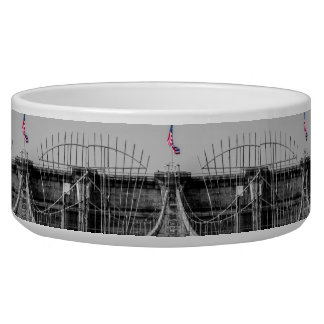Photo of the Brooklyn Bridge in NYC Dog Bowl