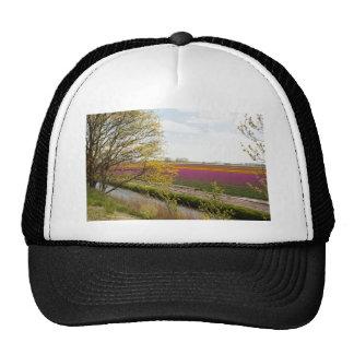 Photo or Tulip Flower Field in the Netherlands, Trucker Hat