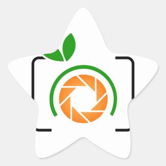 Photo orange with green leaves star sticker