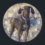 "Photo Personalized Large Round Wall Clock<br><div class=""desc"">We chose our German Shorthair Pointer Retriever for our personalized family room clock. Upload your photo, center, then use the font color keys to change the number&#39;s colors to see what works best with your photograph. You can also choose your size, a smaller round clock or a large square clock....</div>"