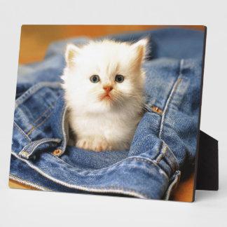 Photo Plaque-Blue Jeans Kitten Plaque