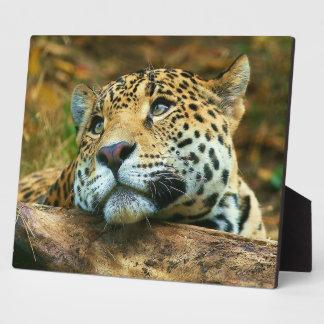 Photo Plaque-Exotic Leopard Plaque