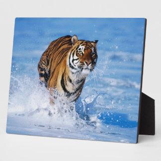 Photo Plaque-Exotic Tiger Plaque