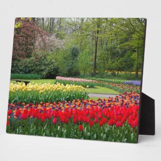 Photo Plaque-Garden Flowers Plaque