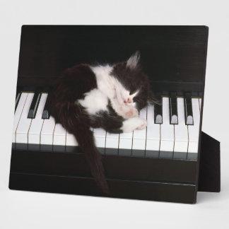 Photo Plaque-Piano Kitten Plaque