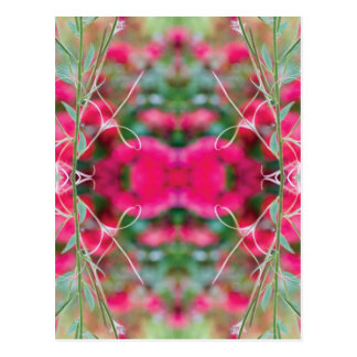 Photo Play Floral Fusion Postcard