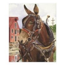 Photo poster, mule