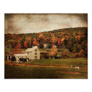 Photo Print-City Folks Farm