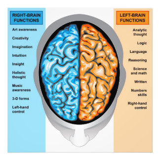 Photo print Human brain left and right functions