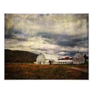 Photo Print-Resting Farm