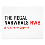 THE REGAL  NARWHALS  Photo Prints