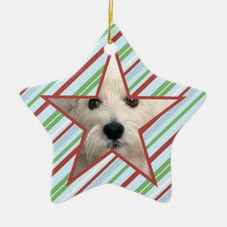 Photo Puppy Star Ornament