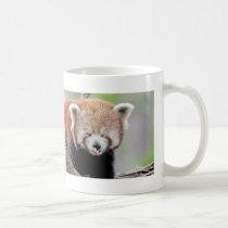 Photo red panda , animals 0399. coffee mug
