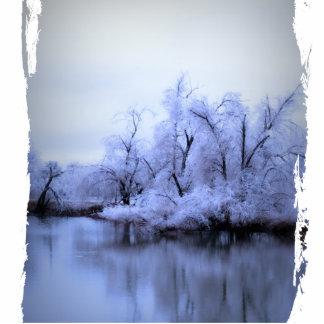 Photo Sculpture, Willow Winter Wonderland