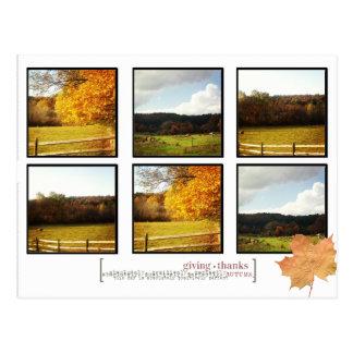 photo sharing thanksgiving postcard