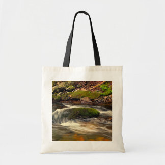 Photo Taken at Fires Creek in North Carolina Budget Tote Bag
