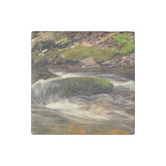 Photo Taken at Fires Creek in North Carolina Stone Magnet