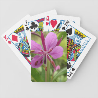 Photo taken by CarlyLouPhotography in Lincolnshire Card Decks