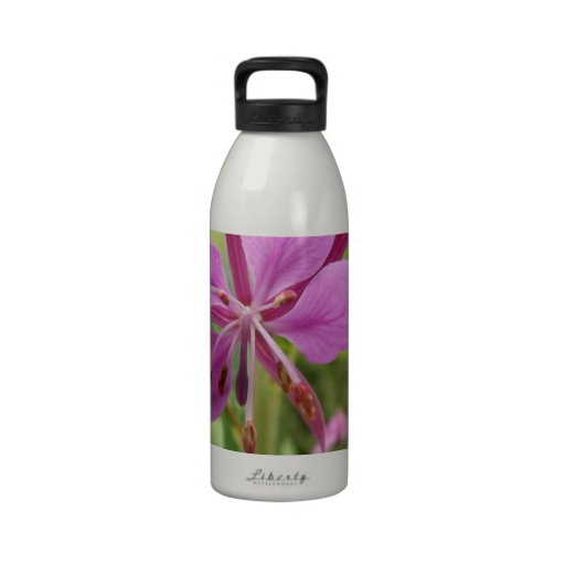 Photo taken by CarlyLouPhotography in Lincolnshire Reusable Water Bottles
