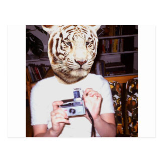 Photo tiger postcard