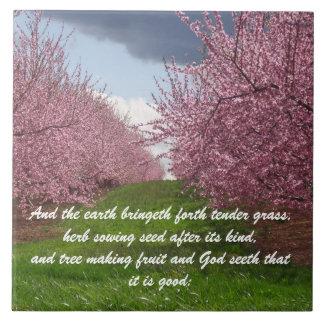 Photo Tile w/Bible Scripture