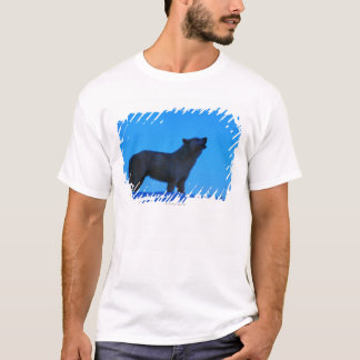 Photo, white wolf howling at night, Color, High T-Shirt