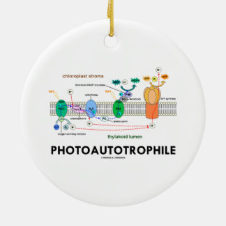 Photoautotrophile Photosynthesis Ceramic Ornament
