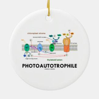 Photoautotrophile Photosynthesis Ceramic Ornament