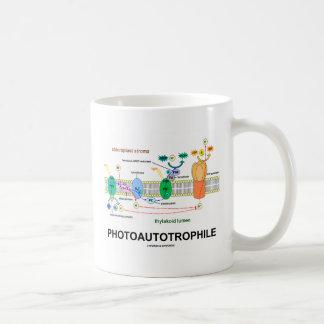 Photoautotrophile Photosynthesis Mug