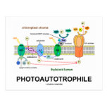 Photoautotrophile Photosynthesis Post Cards