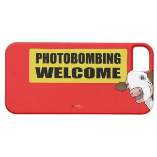 PhotoB iPhone SE/5/5s Case