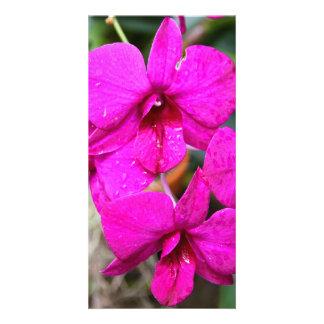 Photocard - Orchid Card
