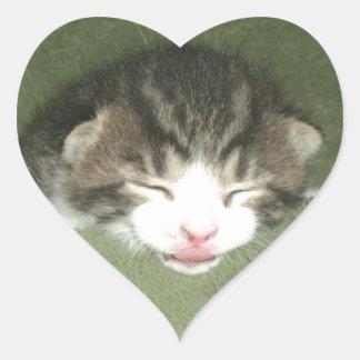 Photogenic Kitten Heart Sticker