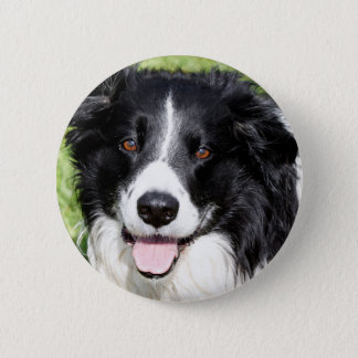 Photograph of a happy dog pinback button