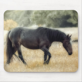 Photograph of a horse with soft focus mouse pad