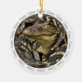 Photograph of a Pod of Baby Gators Double-Sided Ceramic Round Christmas Ornament