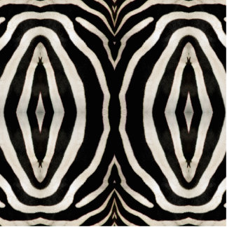 Photograph of a real Zebra's Fur Cutout
