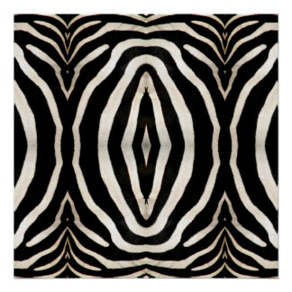Photograph of a real Zebra's Fur Poster