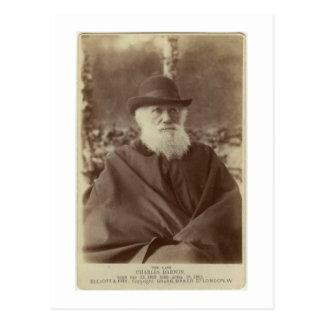 Photograph of Charles Darwin, 29 November 1881 Postcard