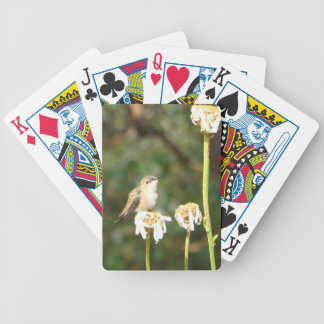 Photograph of Hummingbird Resting on Shasta Daisy Bicycle Playing Cards