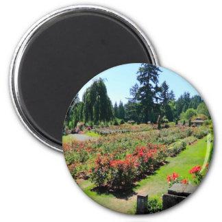 Photograph of Rose Garden, Portland, Oregon 2 Inch Round Magnet