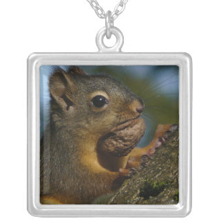 Photograph of Wild Squirrel with Nut Square Pendant Necklace