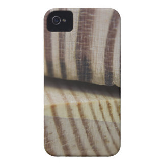 Photograph of wood iPhone 4 Case-Mate case