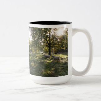 Photographing Sheep Two-Tone Coffee Mug