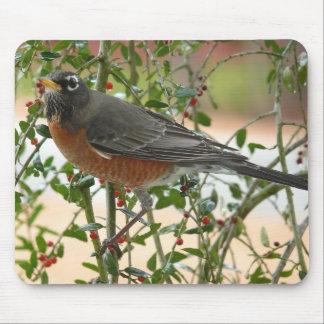 Photographs : birds - mouse pad
