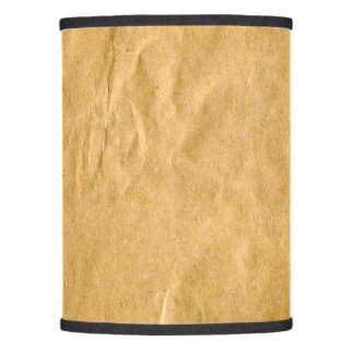 Photography - Crinkly Wrapping Paper + your ideas Lamp Shade