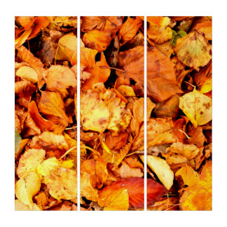 Photography - DRY AUTUMN LEAVES + your ideas Triptych
