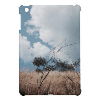 Photography landscape case for the iPad mini